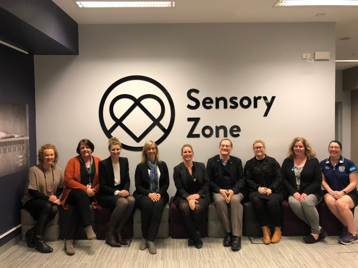 Sensory Zone steering committee